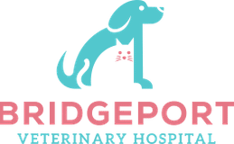 Bridgeport Veterinary Hospital Logo